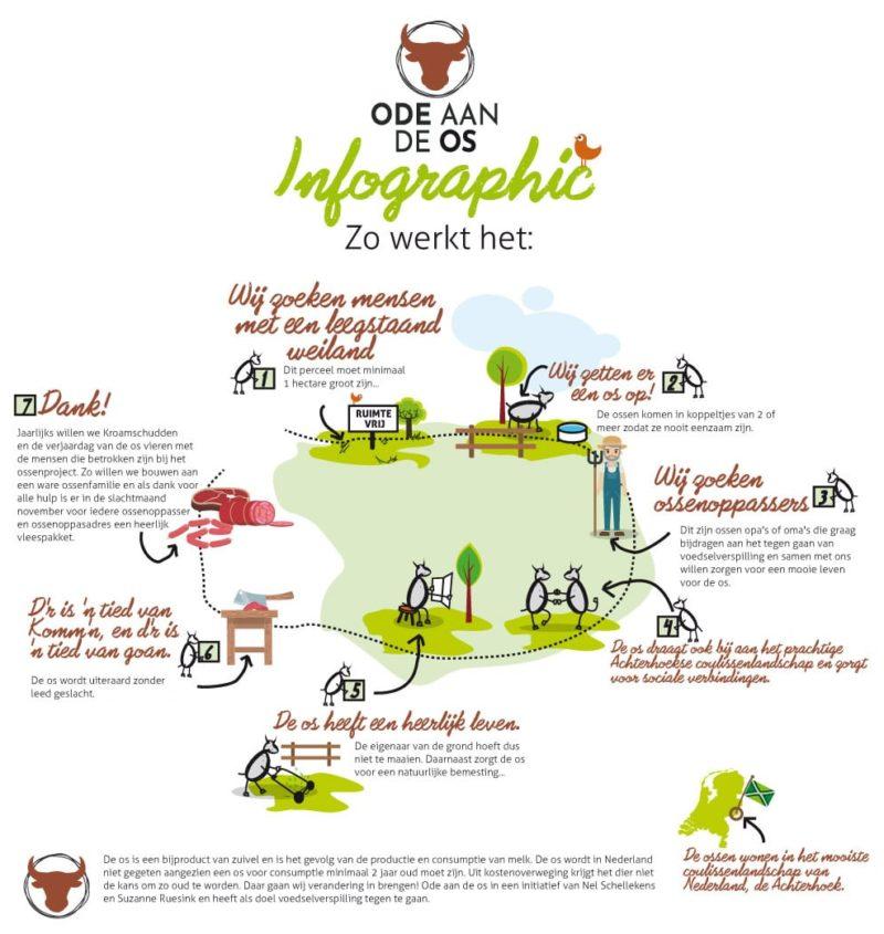 Ode aan de os Infographic